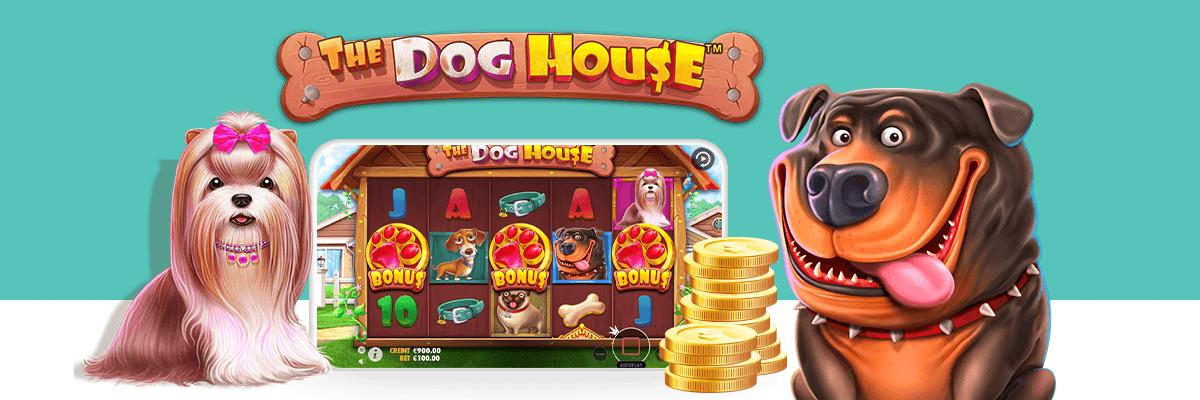 The dog house bonus